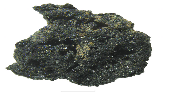 The !4,400 year old charred bread crumb (enlarged) copy